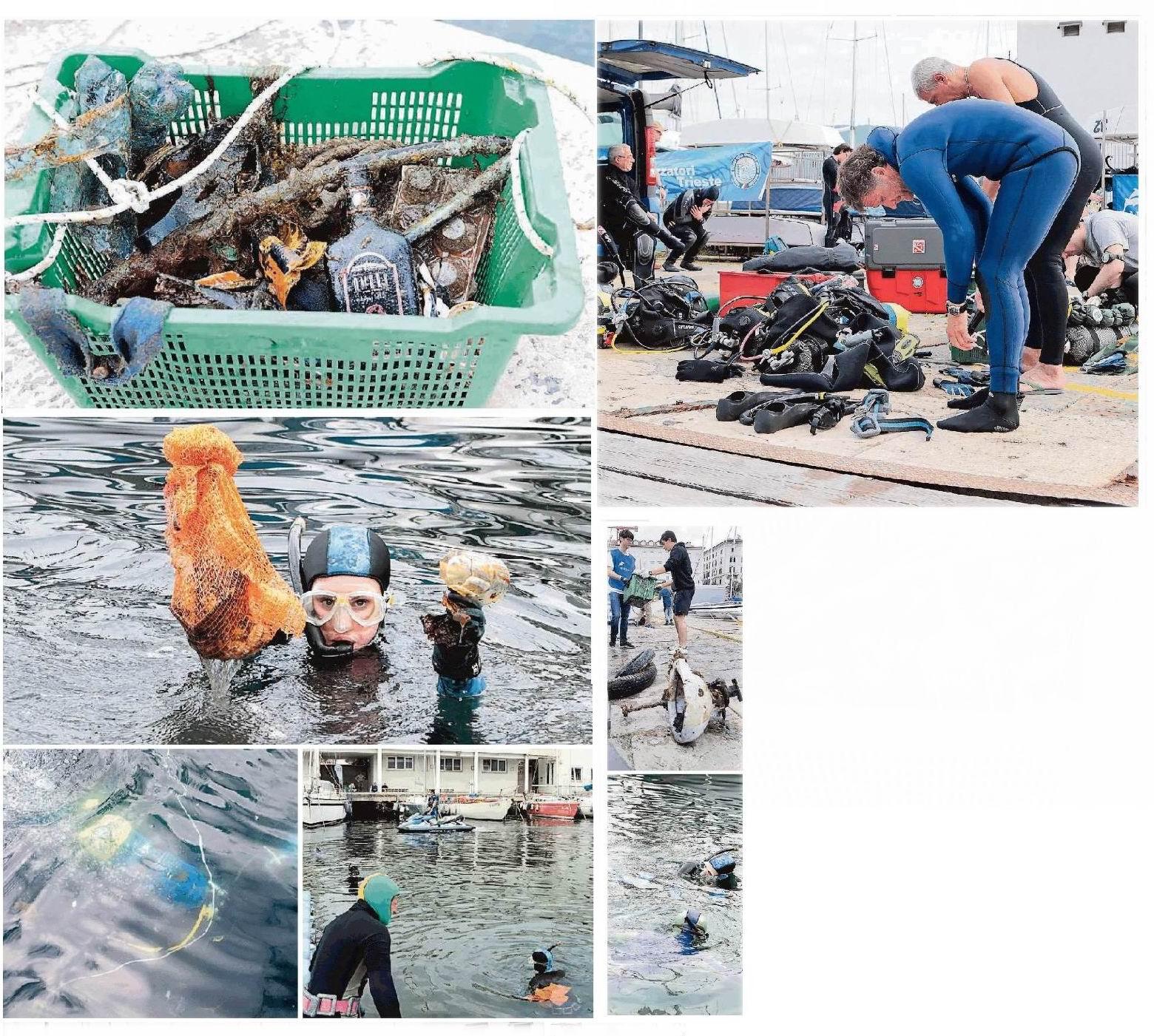 Un sacco di pesci datati incubi